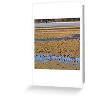 On The March Greeting Card