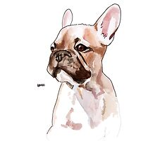 French Bulldog by BnvdoArts
