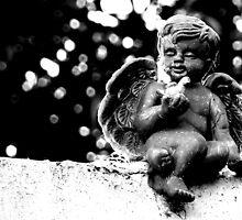 Fallen Angel by Diane