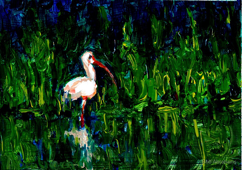 Swamp Bird by Bob Abrahams
