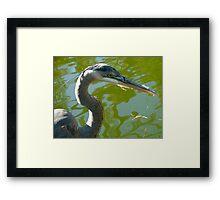 Crane Framed Print