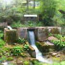 river by venkman