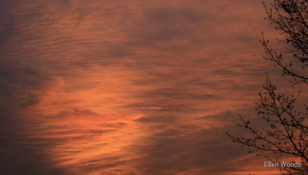 Texas Skies by Ellen Woods