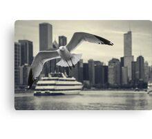 Flying through Chicago Canvas Print