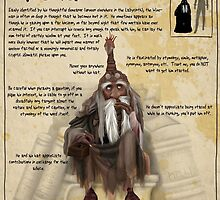 Practical Visitor's Guide to the Labyrinth - Wiseman by Art-by-Aelia