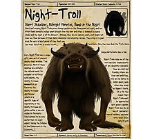 Practical Visitor's Guide to the Labyrinth - Night Troll Photographic Print