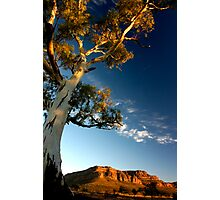 Flinders Ranges, SA - Australia Photographic Print