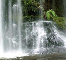 Russel Falls by Stormwolfe