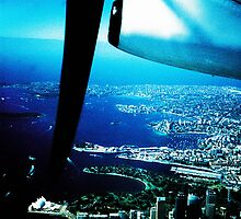 Sydney harbour from light plane by Brett Squires