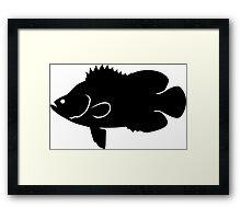 Tripletail Fish Silhouette (Black) Framed Print
