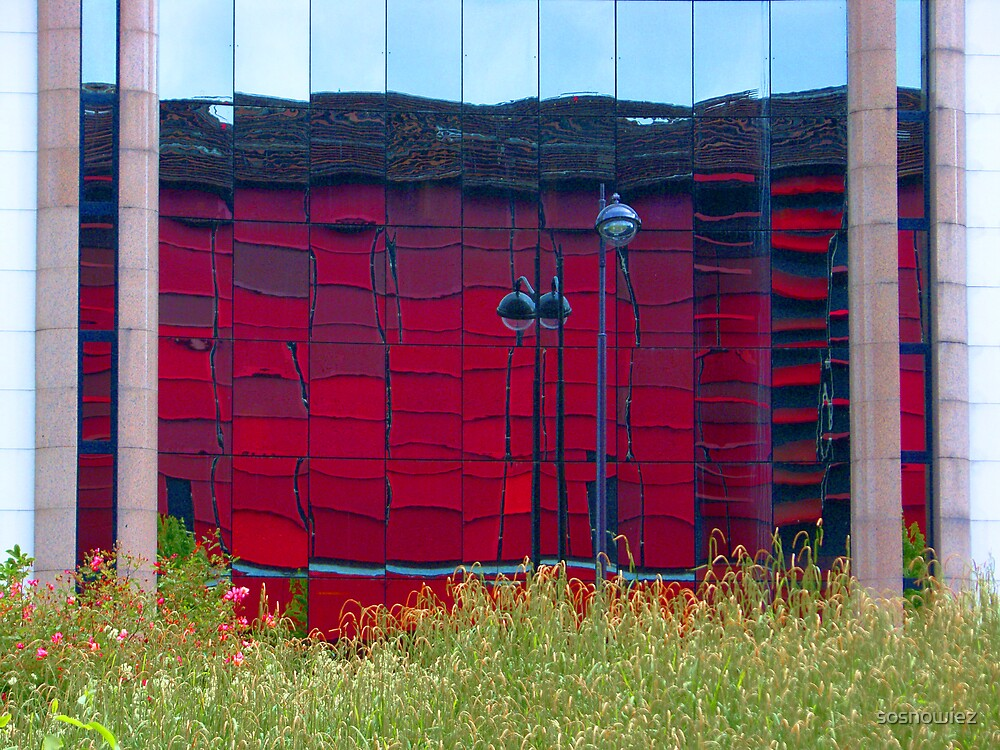 Red Reflects by sosnowiez