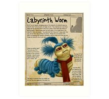 Practical Visitor's Guide to the Labyrinth - The Worm Art Print