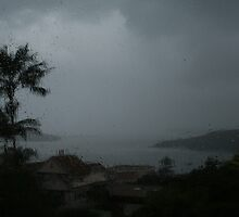 Fairlight Bay and Harbour in the rain.  by Ozcloggie