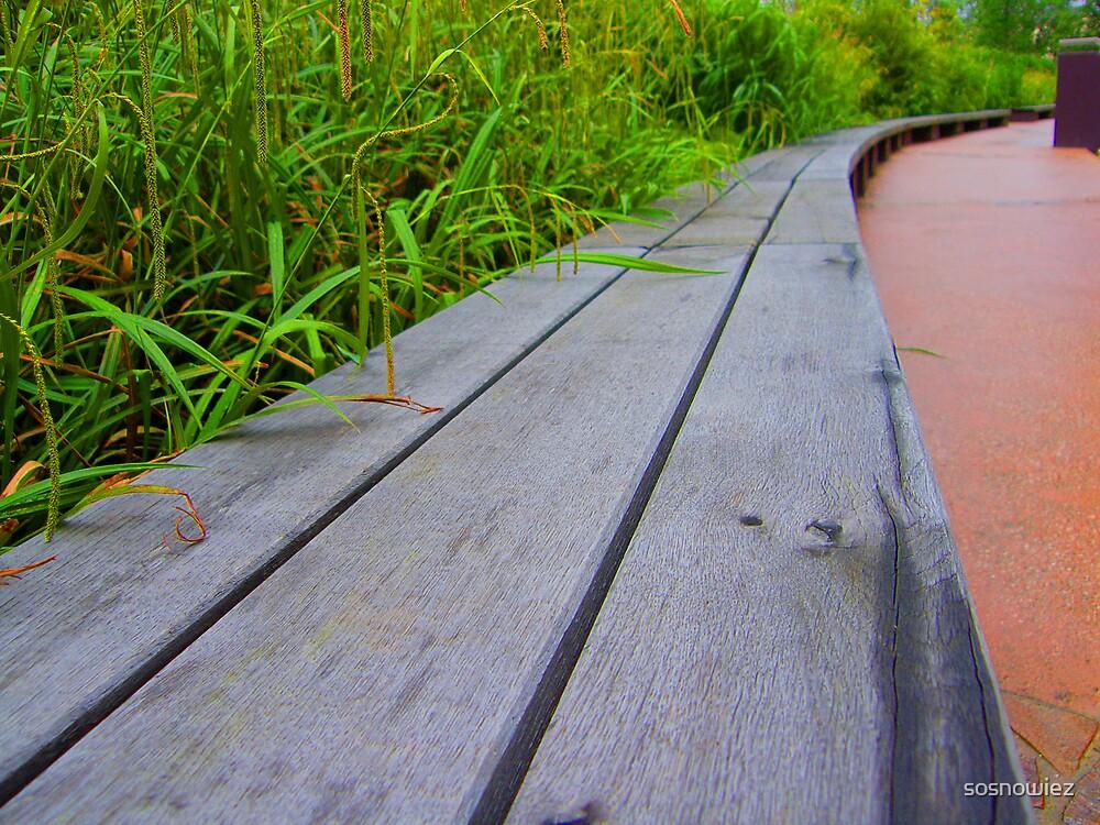 Wooden Bench by sosnowiez