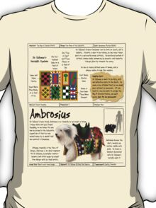Practical Visitor's Guide to the Labyrinth - Ambrosius T-Shirt