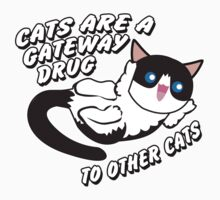 Cats Are A Gateway Drug To Other Cats by CarbonClothing
