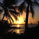 Brampton Sunset by Shannyn