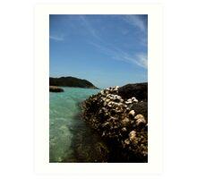 Dead Corals by the beach Art Print