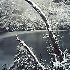 Frozen Lake by Samara  Lee