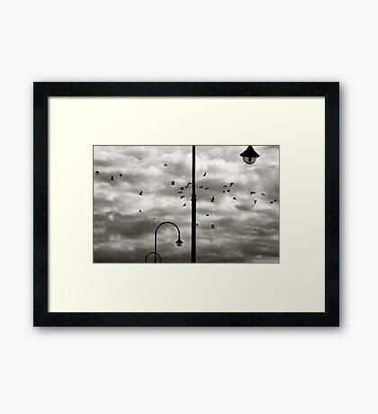 St. Kilda  Framed Print
