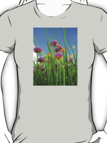 Chive flowers on a sunny day T-Shirt