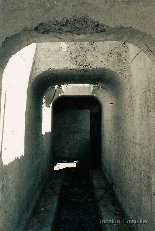 Hallway by Jocelyn  Emswiler