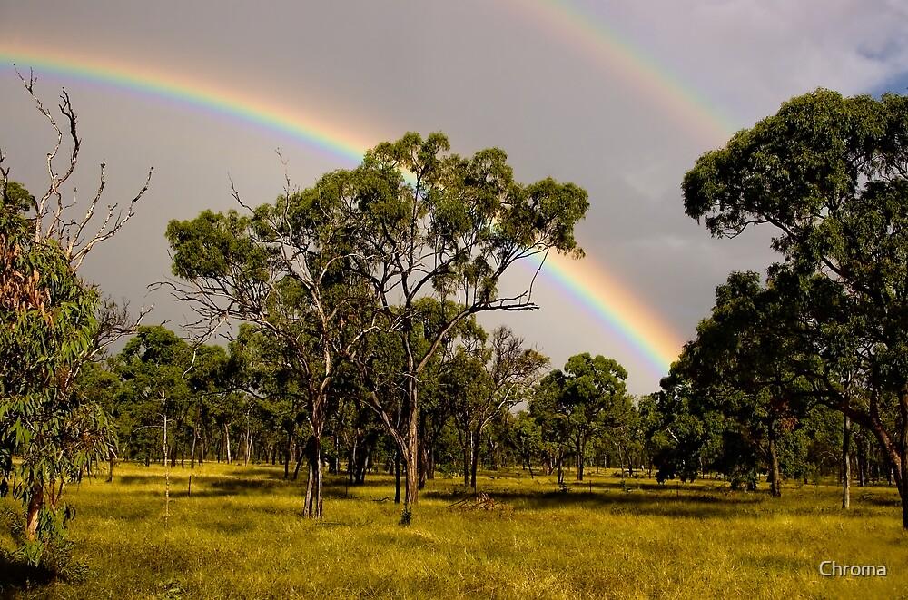 Bush Rainbow by Chroma