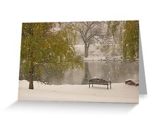 Winter at the duck pond - Colorado Springs Greeting Card