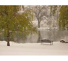 Winter at the duck pond - Colorado Springs Photographic Print