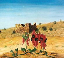 sturts pea in the Murchison by robert murray