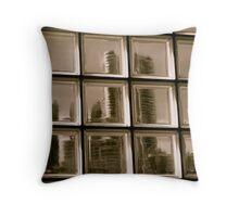 Through a Window darkly Throw Pillow