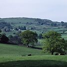 Cattle farm and fells Troutbeck England 198405190010  by Fred Mitchell