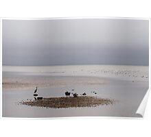 The Grey Ocean, Bruny Island Poster