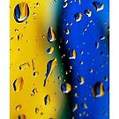 Wet colors- blue and yellow by GentryRacing