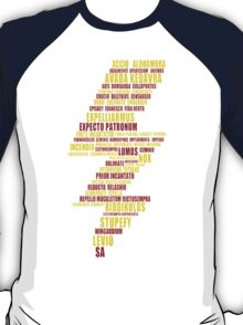 the most famous scar(gryffindor color) T-Shirt