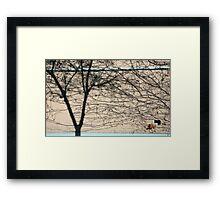 Brunswick wall. Framed Print