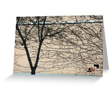 Brunswick wall. Greeting Card