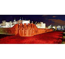 The Tower of London Poppies - 1 Photographic Print