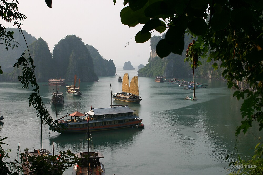 Halong Bay Vietnam Looking Back by boydmace