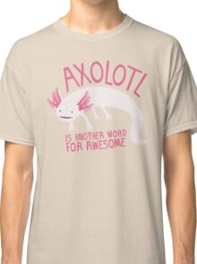 Another Word for Awesome Classic T-Shirt
