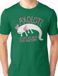 Another Word for Awesome T-Shirt