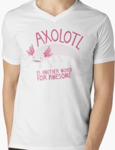 Another Word for Awesome Mens V-Neck T-Shirt