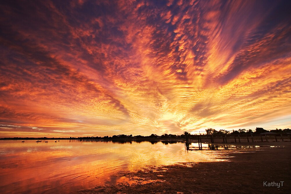 Splendour Of Dawn - Lake Albert, Meningie by KathyT