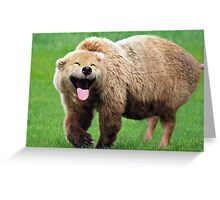 Much Bear, Such Pig, Wow Greeting Card