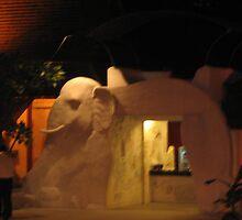 Elephant With A Hole by ibizo