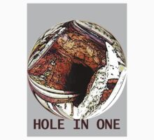 The Hole in one by robert murray