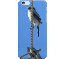 Loggerhead Shrike Closeup iPhone Case/Skin