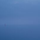 Red Channel Light, Misty Twilight, Queenscliff by Joe Mortelliti