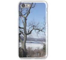 Winter on the Hudson iPhone Case/Skin