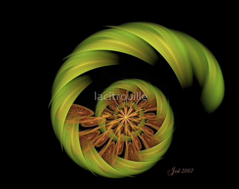 Lime and Orange by lacitrouille